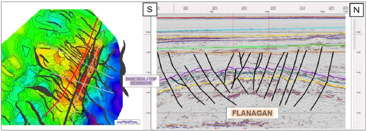 Flanagan depth structure map and representative seismic line.